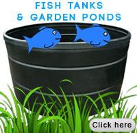 fish tanks and garden ponds